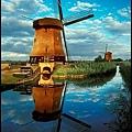 15荷蘭.jpg