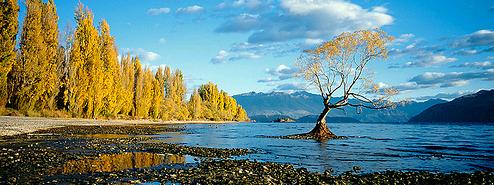 紐西蘭-1.jpg