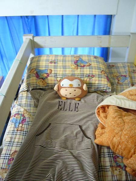 我的床~平常我不在的時候由貓頭鷹先生負責看家.JPG