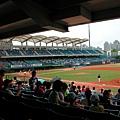新莊棒球場內野十區15排的視野