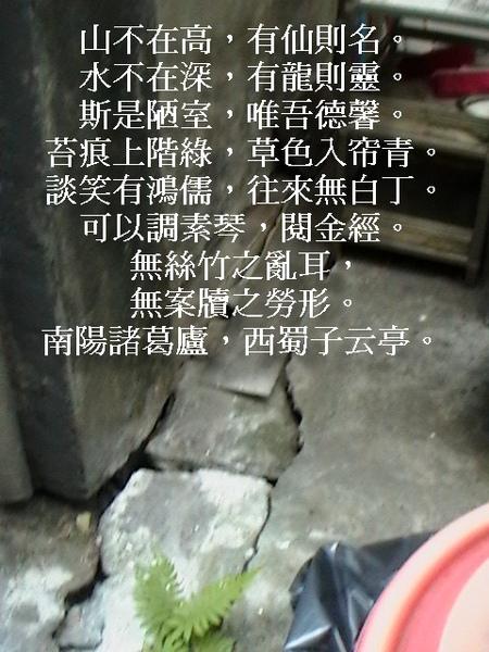1 杭州.jpg