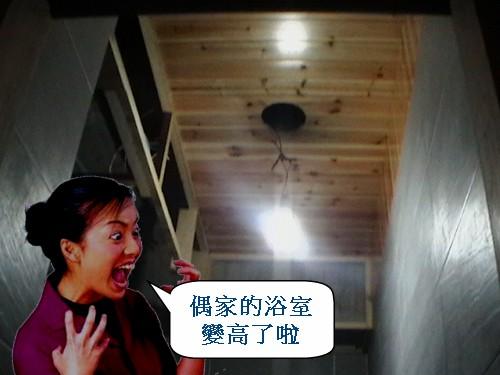 4  浴室造型杉木天花板.jpg