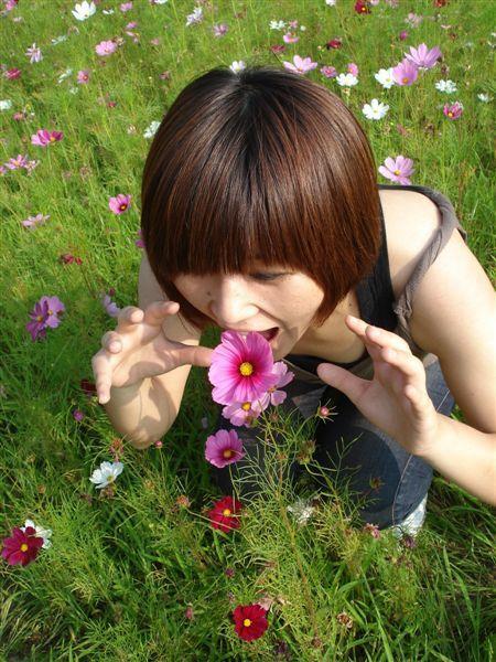 花可以吃嗎?