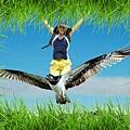 美麗快樂島 飛向那未來…也是大家的未來!我們一起來 在天空飛翔 敞開我們的雙臂 投向遼闊的天空  讓我們飛向  那海角天涯!!…