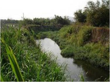 大樹鄉_獅龍溪水質淨化及沿岸景觀與步道改善及自行車串連工程2.png