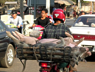 traffic-cambodia.jpg