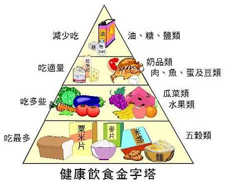 健康飲食金字塔