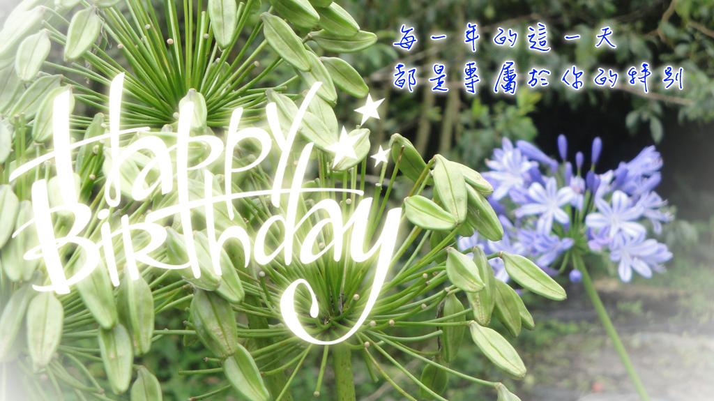 1208-birthday