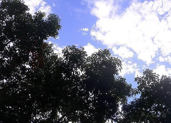 內湖康樂山075.jpg