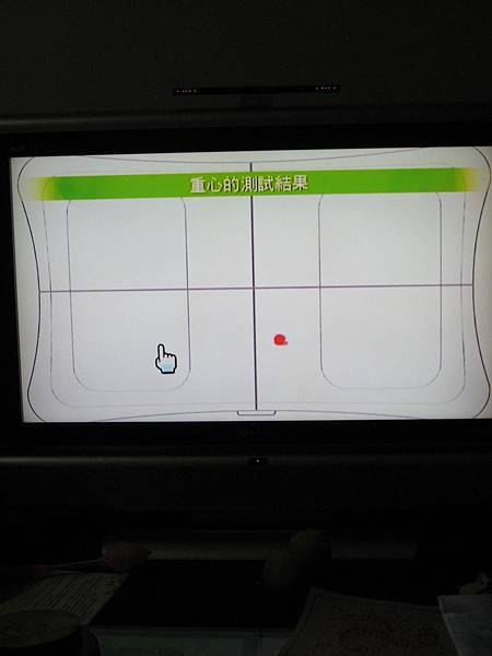 wii fit (10)