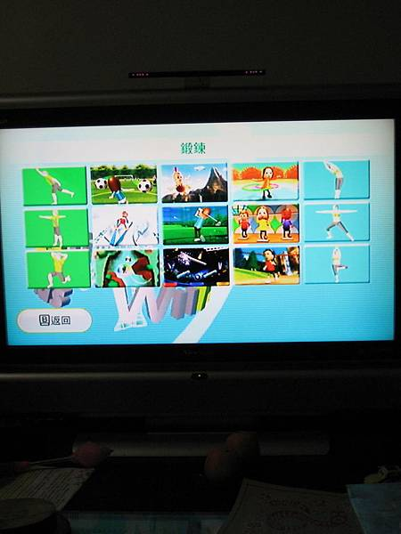 wii fit (15)
