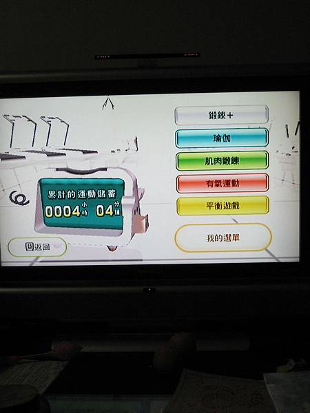 wii fit (16)