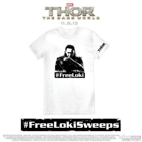 FreeLoki02