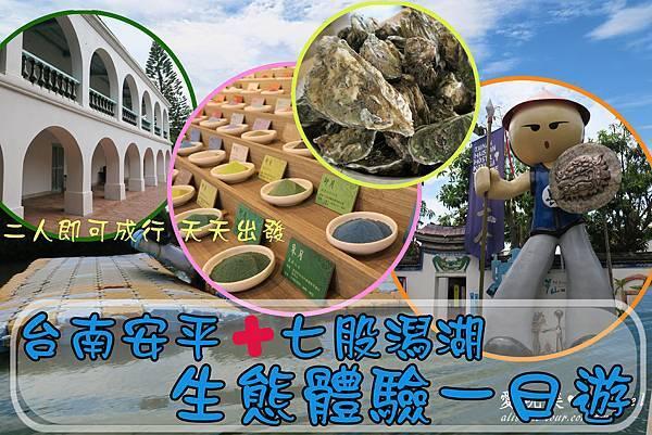 台南七股潟湖生態體驗一日遊