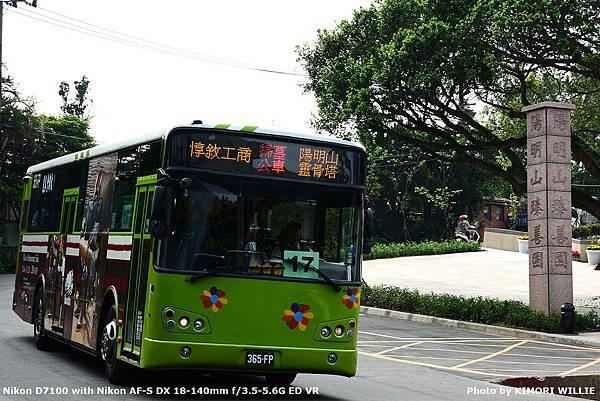 DSC_6582.JPG