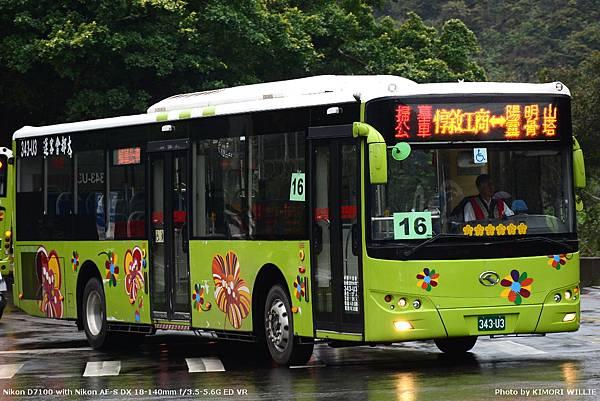 343U3.JPG