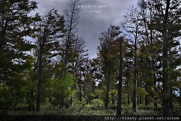 百日連拍11月14日.jpg