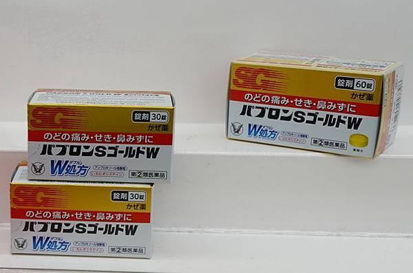 DSC01073a