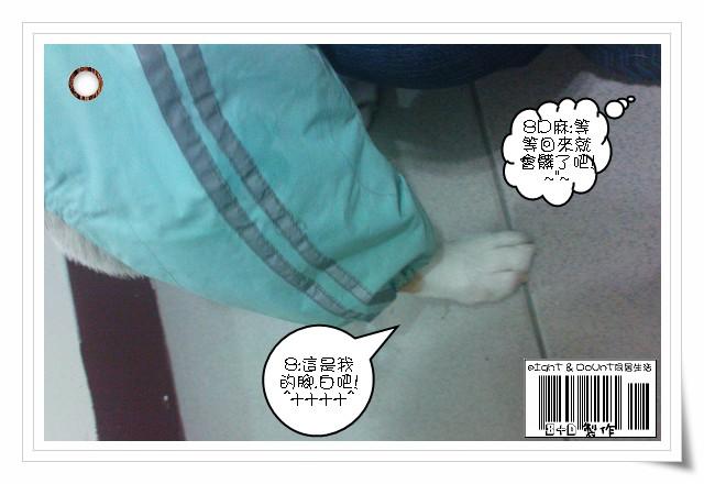 DSC01662-1120-5.jpg