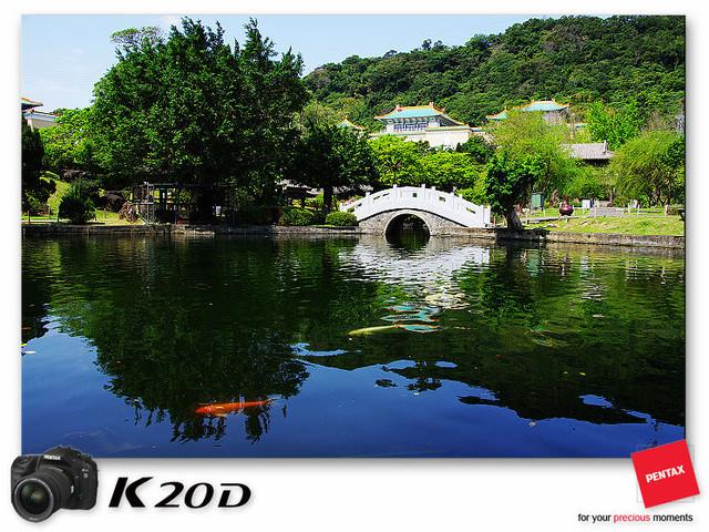 KIN_8525