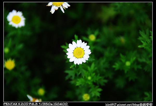 nEO_IMG_KIN_7448.jpg