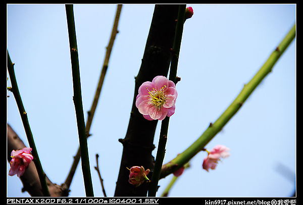 nEO_IMG_KIN_7240.jpg