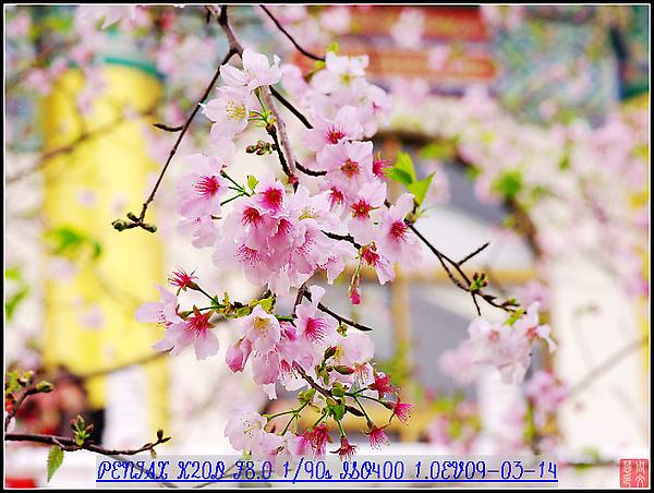 KIN_9735.jpg
