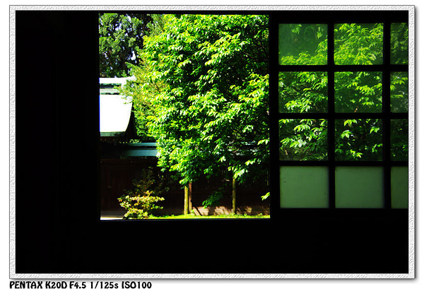 nEO_IMG_KIN_8525.jpg