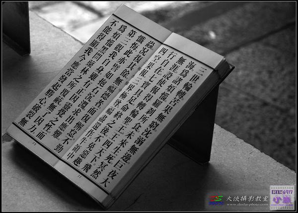 nEO_IMG_KIN_4797.jpg