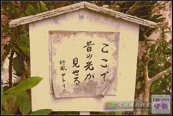 nEO_IMG_KIN_7292.jpg