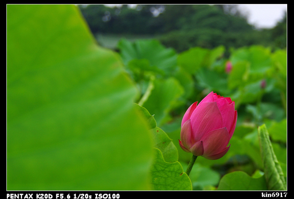 nEO_IMG_KIN_9283.jpg