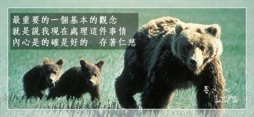 0503_bears
