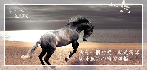 0519_horse-