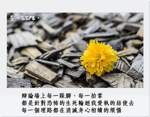 0923_yellow-370256_1280_.jpg