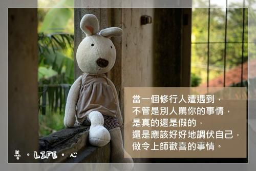 shw2_.jpg
