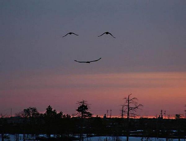 老天爺在微笑