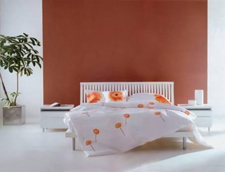 臥房不宜擺過多的植物