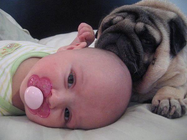 小孩與狗合照