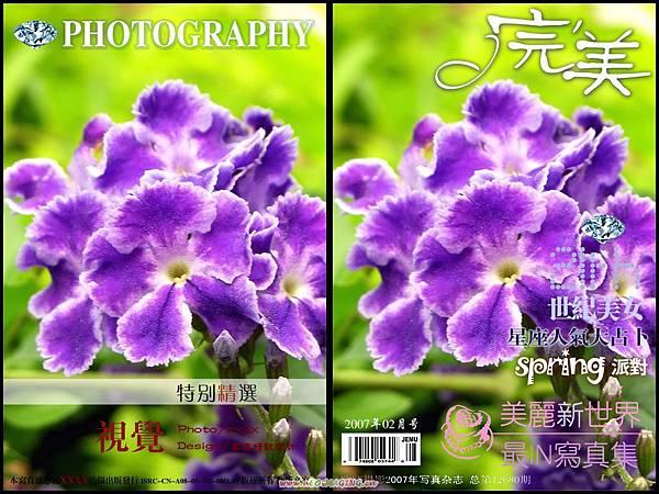 春花集錦 106a
