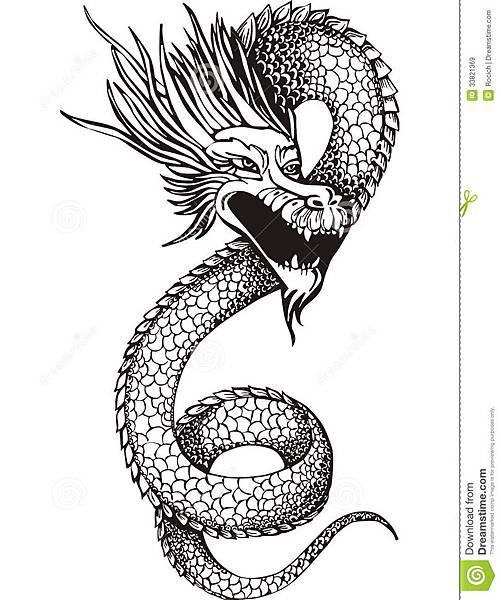 中国龙蛇-33821369