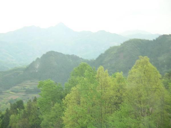 秦嶺山色2608