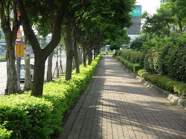 DSCN3270aa忠孝路+扶輪公園.jpg