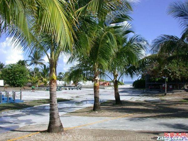 南沙椰林2.jpg
