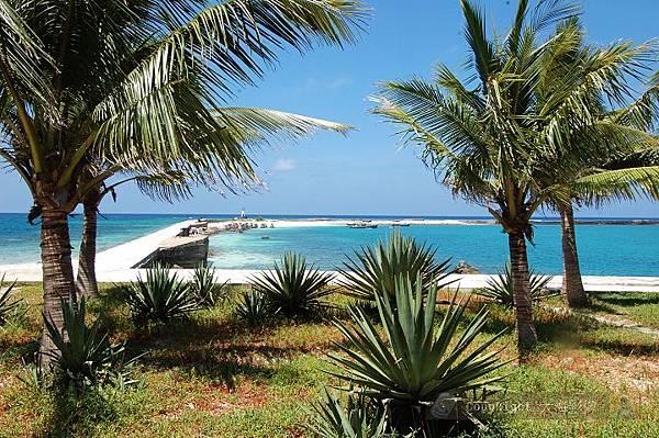 西沙東島椰子海港.jpg