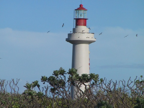 西沙東島燈塔.jpg