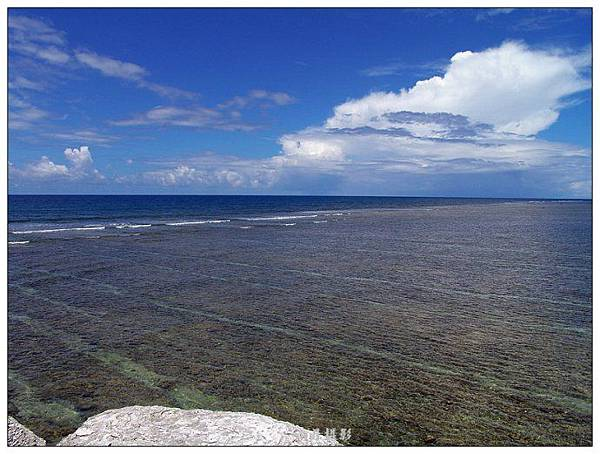 西沙的珊瑚海.jpg