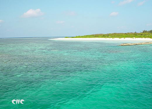 西沙珊瑚島風光43.jpg