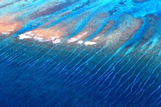 西沙珊瑚礁2a.jpg