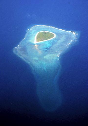 南沙西月島礁盤aa.jpg