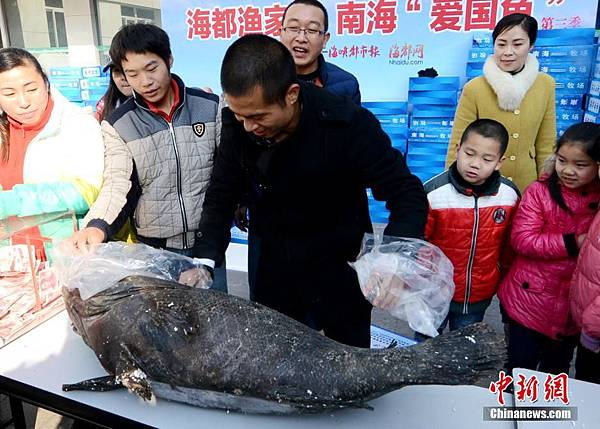 美濟礁出產的愛國魚.jpg